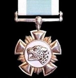20 -Bravery Bronze 2